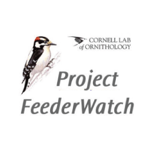 Project Feeder Watcher