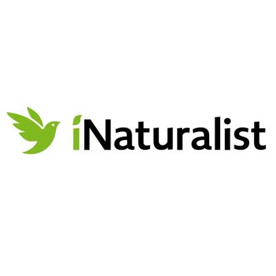 iNaturalist and SEEK