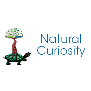 From Acknowledgement to Action: Connecting to the Land Through Natural Curiosity